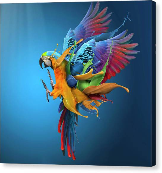 Parrots Canvas Print - Flying Colours by Sulaiman Almawash