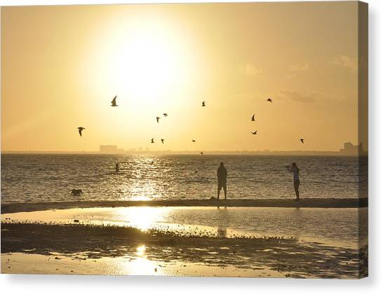 Flying For The Sun Canvas Print