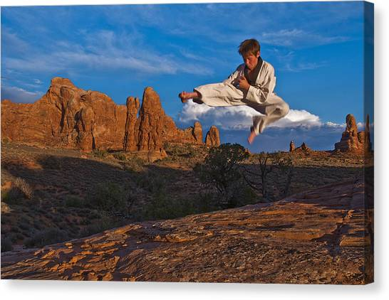 Taekwondo Canvas Print - Flying High by Nichon Thorstrom