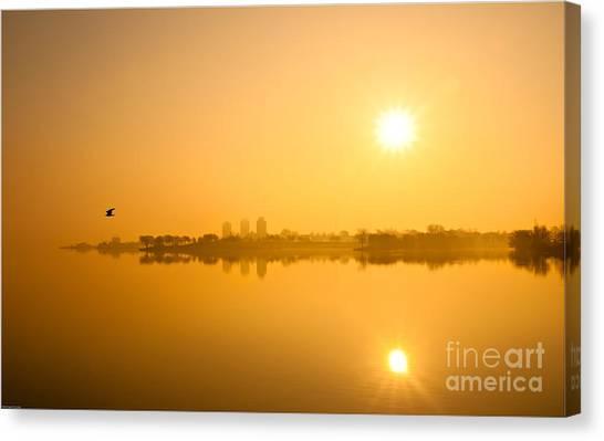 Flying In The Golden Light Canvas Print by Michael Hrysko