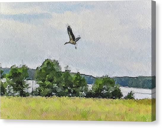 Flying Nature Canvas Print by Yury Malkov