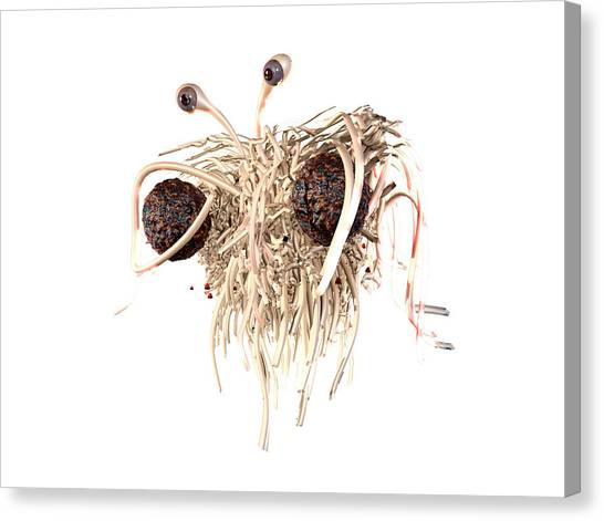Spaghetti Canvas Print - Flying Spaghetti Monster by Christian Darkin