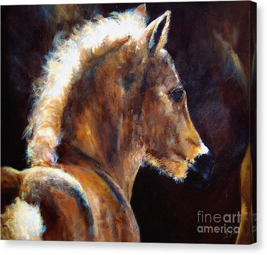 Foal Chestnut Filly Painting Canvas Print