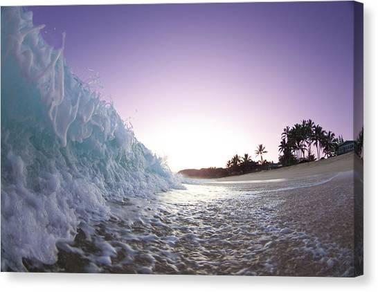 Ocean Sunrises Canvas Print - Foam Wall by Sean Davey