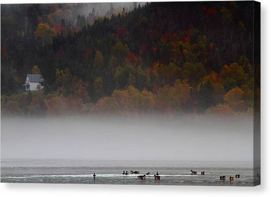 Cabot Trail Canvas Print - Fog Along The Cabot Trail During Autumn by Jetson Nguyen