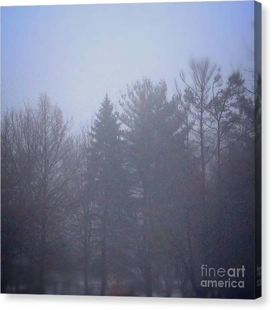 Fog And Mist Canvas Print
