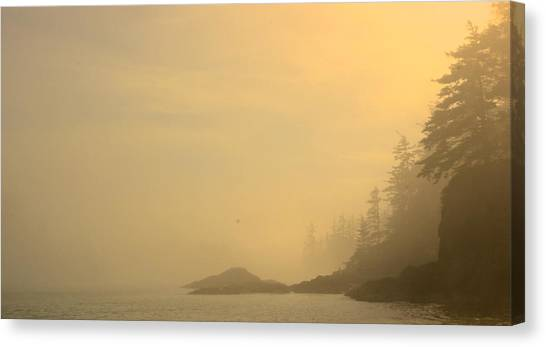 Fog And Sun Canvas Print