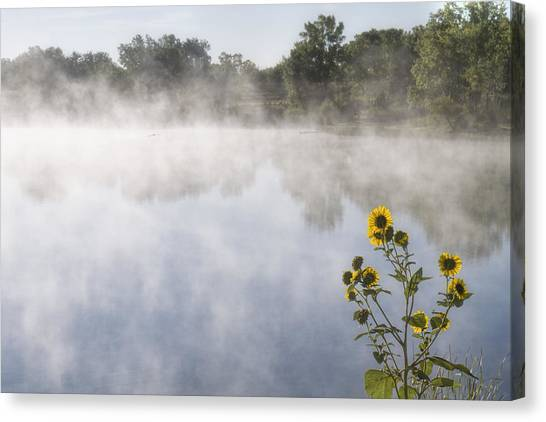 Canvas Print featuring the photograph Fog And Sunflowers by Rob Graham