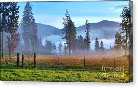Fog Highlights Canvas Print