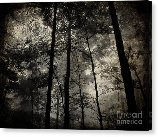 Fog In The Forest Canvas Print by Lorraine Heath