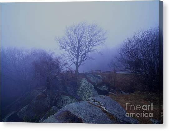 Fog Invasion Canvas Print