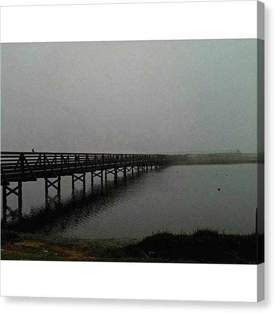 Wetlands Canvas Print - Fog Is So Underrated  by Heather  Ennis