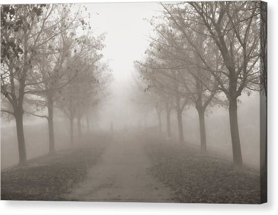 Fog Monochrome Canvas Print