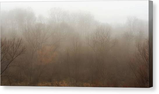 Foggy Forests Canvas Print - Fog Riverside Park by Scott Norris