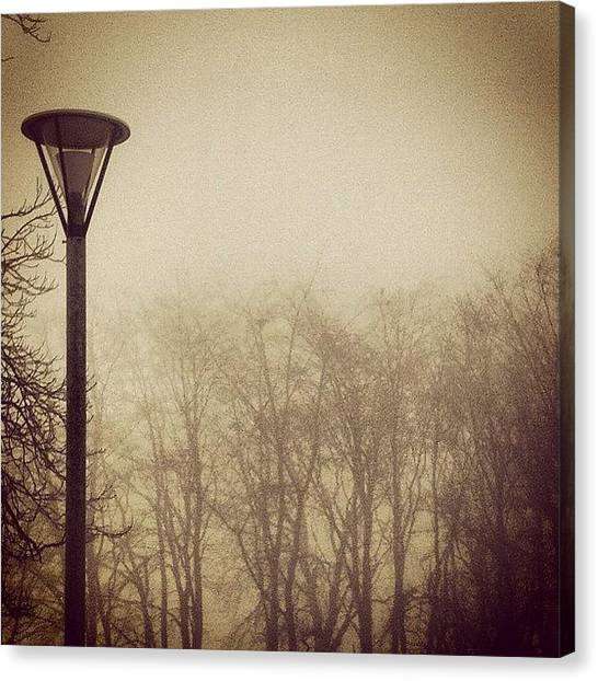 Ufos Canvas Print - #fog #sweden #nature #winter #heaven by Michell Gronlund