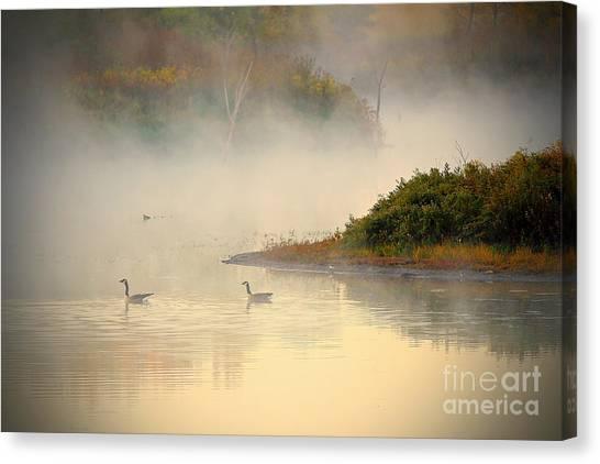 Foggy Autumn Swim Canvas Print