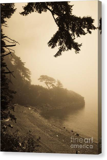 Foggy Beach Canvas Print