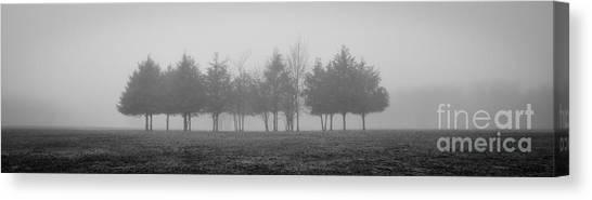 Foggy Day Canvas Print