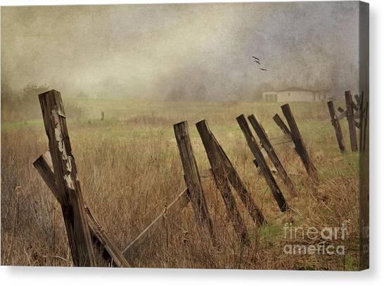 Foggy Dream Canvas Print