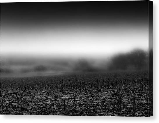 Foggy Field Canvas Print