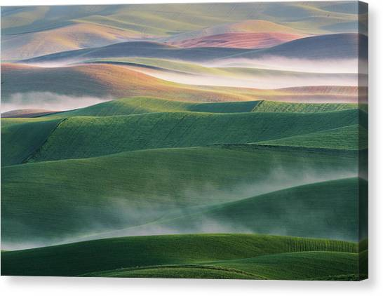 Rolling Hills Canvas Print - Foggy Morning by ??????? / Austin
