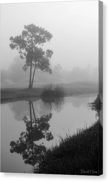 Foggy Morning 2 Canvas Print