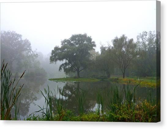 Foggy Morning At The Willows Canvas Print