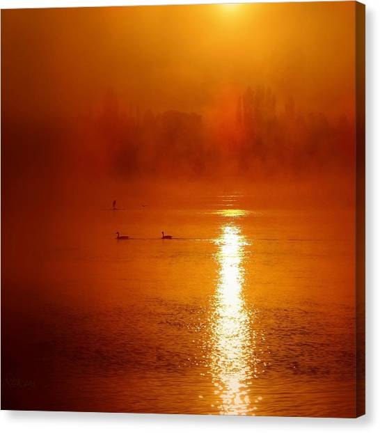 Foggy Morning On The River Canvas Print
