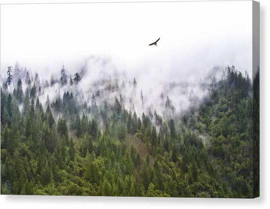 Foggy Mountain Canvas Print