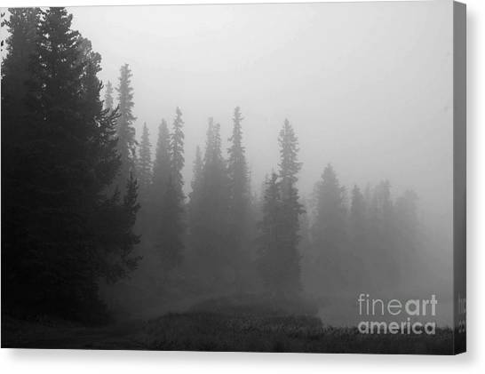 Foggy Mt Evans Canvas Print by Barbara Schultheis