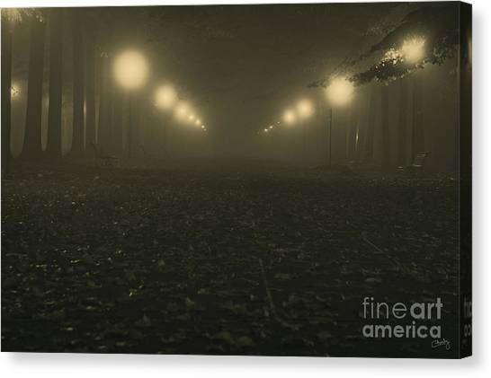 Foggy Night In A Park Canvas Print