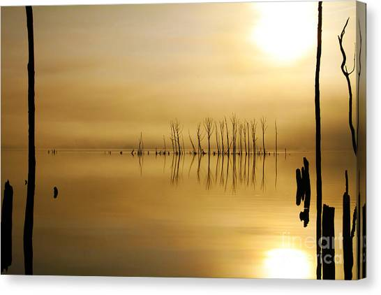 Foggy Rise Canvas Print