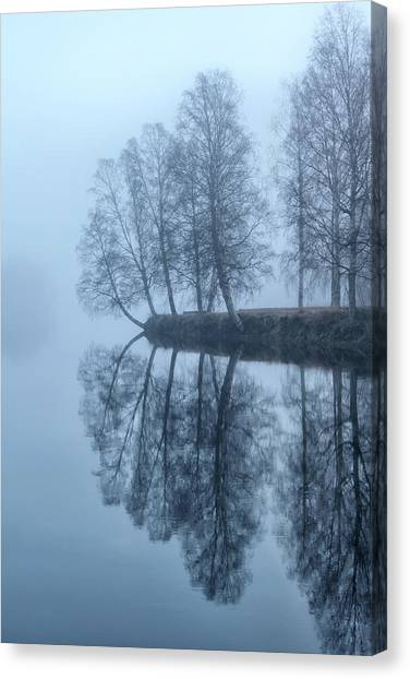 Birch Canvas Print - Foggy River Day by Monica Amberger