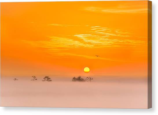 Bayous Canvas Print - Foggy Sunrise by Brad Monnerjahn