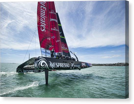 Foiling One Canvas Print by Chris Cameron