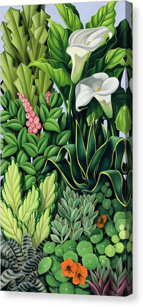 Garden Snake Canvas Print - Foliage by Catherine Abel