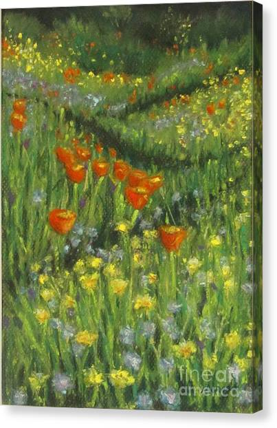 Poppy Trail Canvas Print