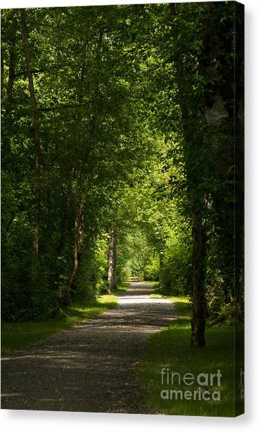 Follow Your Path Canvas Print by Malu Couttolenc