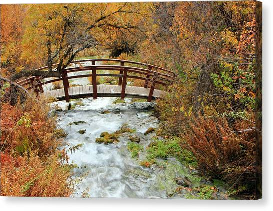Foot Bridge At Cascade Springs. Canvas Print