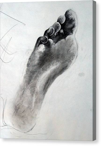 Foot Study Canvas Print by Corina Bishop