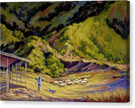 Foothill Sheepherder Canvas Print