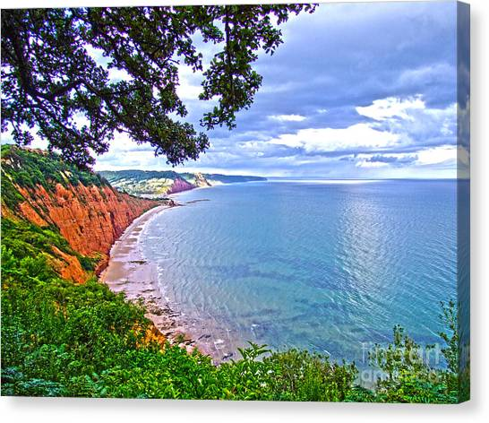 Footpath To Sidmouth Canvas Print