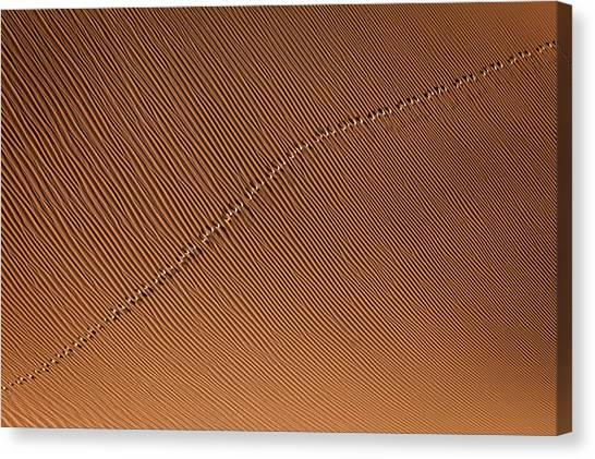 Iranian Canvas Print - Footprint by Mohammadreza Momeni