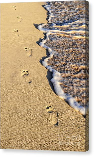 Sands Canvas Print - Footprints On Beach by Elena Elisseeva