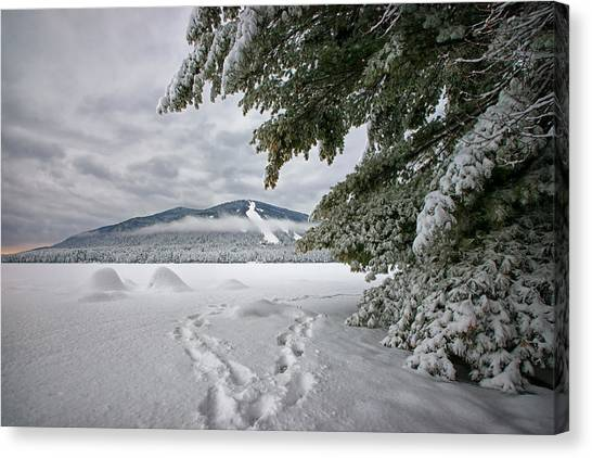 Footsteps To The Mountain Canvas Print