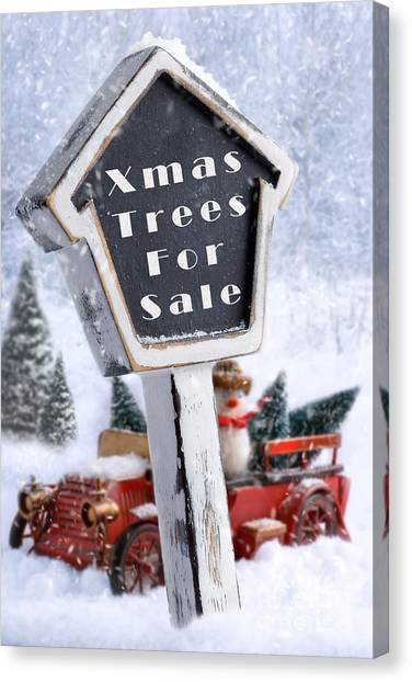 Snowball Canvas Print - For Sale Sign by Amanda Elwell