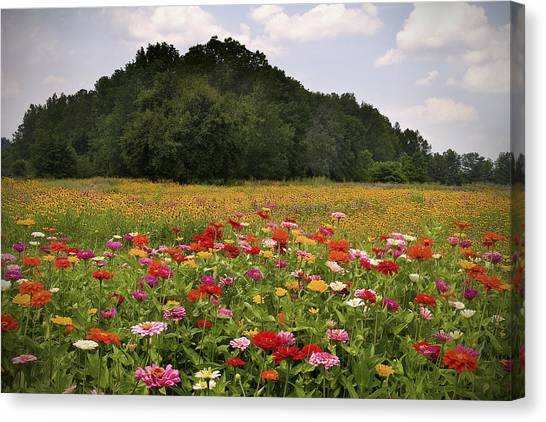 For The Beauty Of The Earth Canvas Print