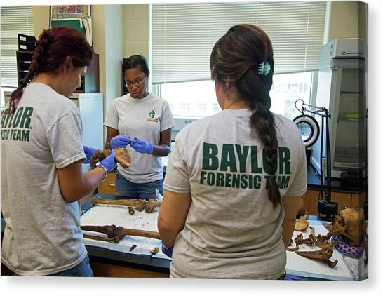Baylor University Canvas Print - Forensic Scientists Identifying Remains by Jim West