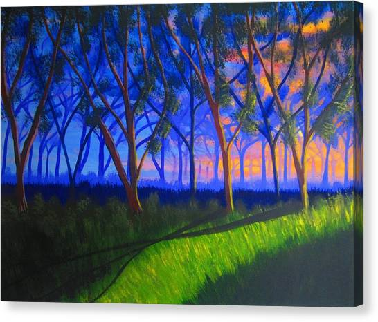 Forest At Sunset Canvas Print by Haleema Nuredeen