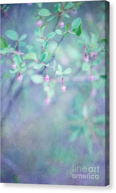Wild Berries Canvas Print - Forest Bells by Priska Wettstein